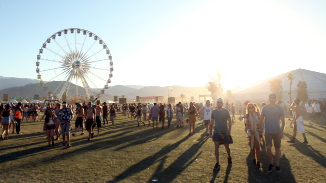New infographic shows how festival-goers differ from normal music fansCoachella