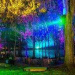 5 musical moments that shook the crowd at Suwannee Hulaween 2017 [Event Review]